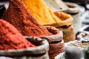 spices-india-yoga-retreat