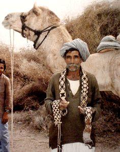 camel-belt